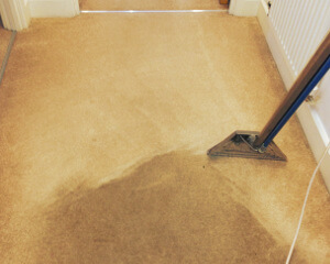 Carpet cleaning Enfield EN