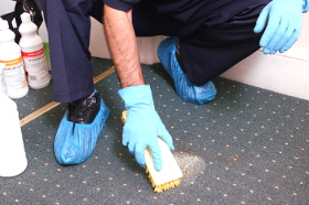 Carpet cleaning Strand WC2